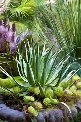 Sherrie's Spider Agave Poster