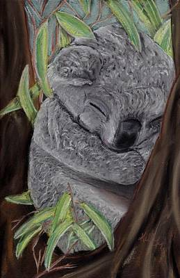 Shhhhh Koala Bear Sleeping Poster by Kelly Mills