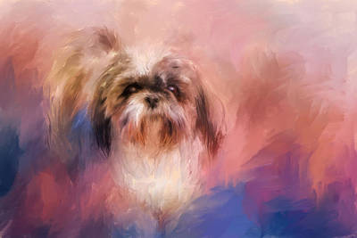 Shih Tzu On The Move Poster by Jai Johnson