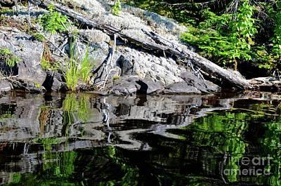 Shoreline Reflections Poster