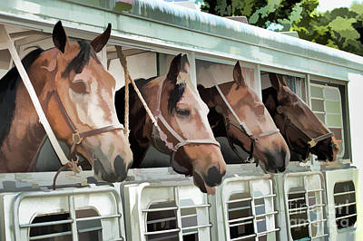 Show Horses On The Move  Poster by Wilma Birdwell