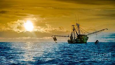Shrimp Trawler At Dawn Poster