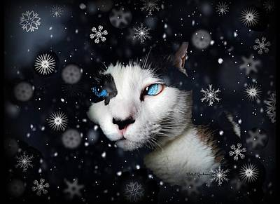 Siamese Cat Snowflakes Image   Poster