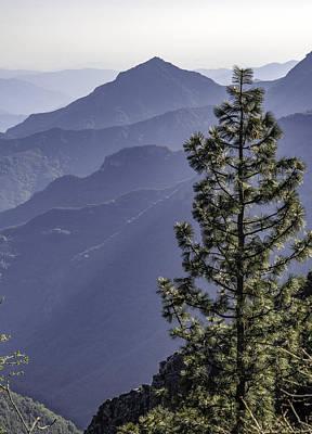 Sierra Nevada Foothills Poster by Steven Sparks