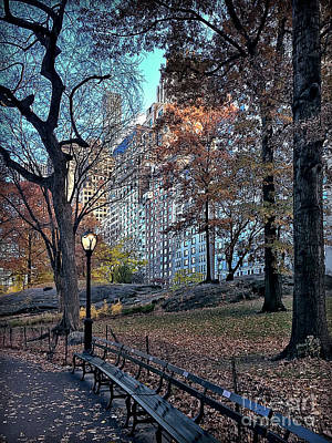 Poster featuring the photograph Sights In New York City - Central Park by Walt Foegelle