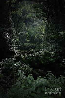 Silence Is Round Me   - Mokulehua Poster by Sharon Mau