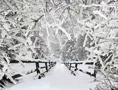 Silent Path In The Snow Poster by Debra and Dave Vanderlaan