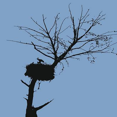 Silhouette Of Stalk Nest And Fledglings Vector Poster