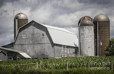 Silos Standing Poster