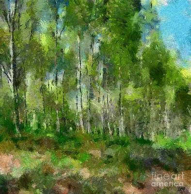 Silver Birches Poster by Dragica Micki Fortuna