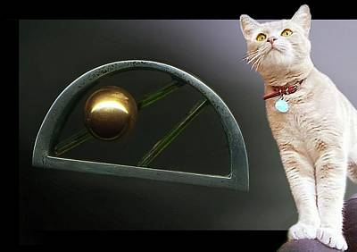 Cat, Silver And Gold  Brooch Poster
