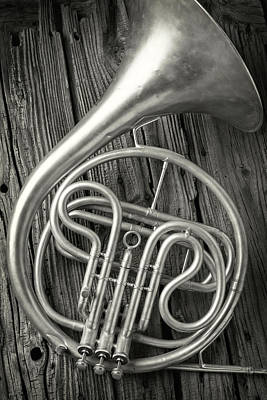 Silver French Horn Poster by Garry Gay