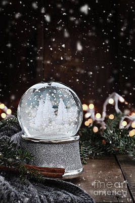 Poster featuring the photograph Silver Snow Globe by Stephanie Frey
