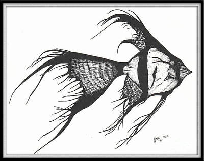 Silver Veiltail Angelfish Fish Art Poster