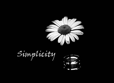 Simplicity Daisy Poster by Barbara St Jean