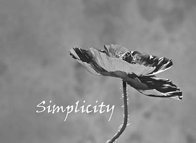 Simplicity Poppy Poster by Barbara St Jean