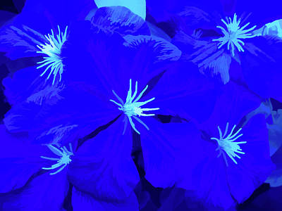 Simply Blue Passion Poster by Aimee L Maher Photography and Art Visit ALMGallerydotcom