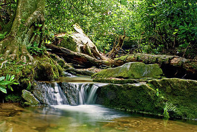 Poster featuring the photograph Sims Creek Waterfall by Meta Gatschenberger