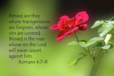 Single Red Rose Romans 4 V 7-8 Poster by Linda Phelps