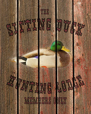 Sitting Duck Hunting Lodge Poster by TL Mair