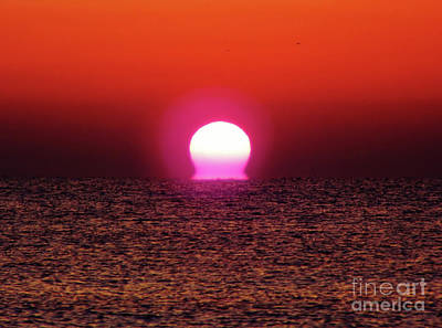 Poster featuring the photograph Sizzling Sunrise by D Hackett