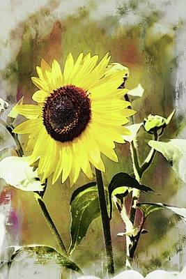 Sketchy Sunflower 3 Poster by Marty Koch