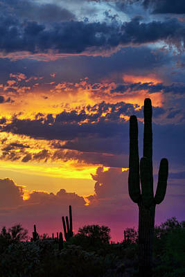 Skies Aglow In Arizona  Poster by Saija Lehtonen