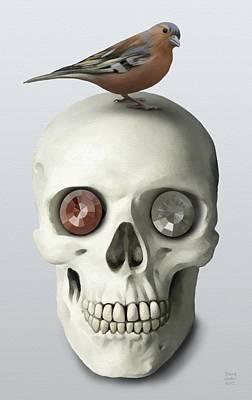 Skull And Bird Poster