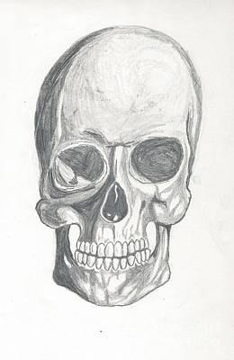 Skull Study 2 Poster by Reed Novotny