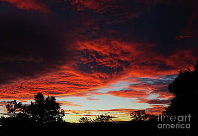 Poster featuring the photograph Sky On Fire by Angela DeFrias