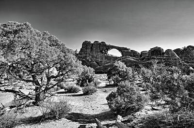 Skyline Arch In Arches National Park Poster