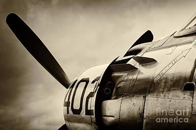 Skyraider Poster by Richard Allen