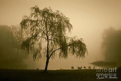 Slater Park Landscape No. 1 Poster by David Gordon