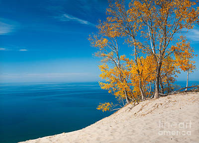 Sleeping Bear Dunes Vista 002 Poster by Larry Carr