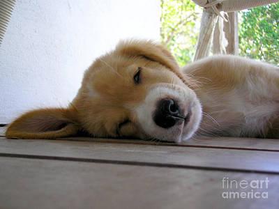 Sleepy Jojo Poster by Barbara Marcus