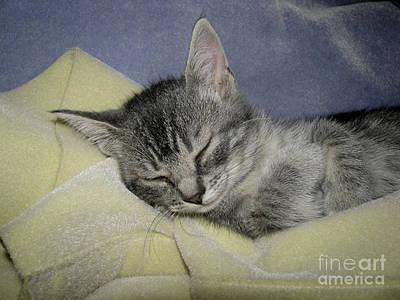 Sleepy Time Poster