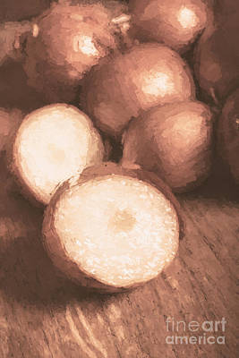 Sliced Brown Onion Digital Oil Painting Poster by Jorgo Photography - Wall Art Gallery