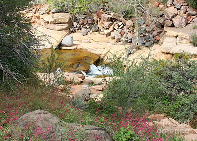 Slide Rock With Pink Wildflowers Poster by Carol Groenen