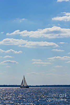 Sloop Sailing On The Harbor Poster