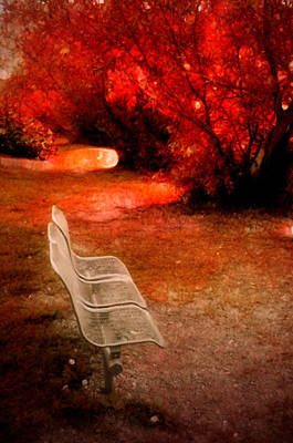 Small Bench In A Red World Poster by Tara Turner
