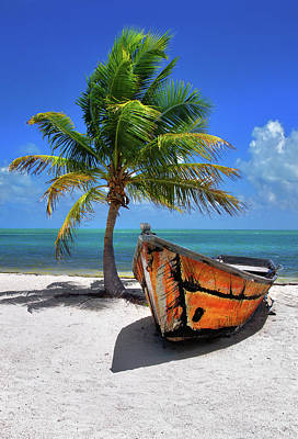 Small Boat And Palm Tree On White Sandy Beach In The Florida Keys Poster