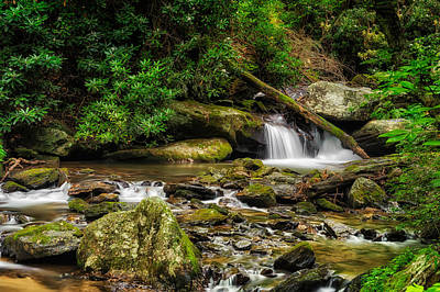 Smith Creek Chattahoochee National Forest - 1 Poster by Frank J Benz