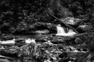 Smith Creek Chattahoochee National Forest - 3 Poster by Frank J Benz