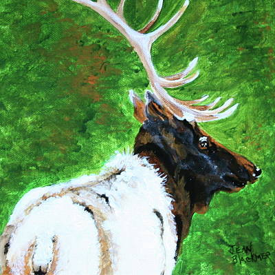 Smokey Mountain Elk Poster