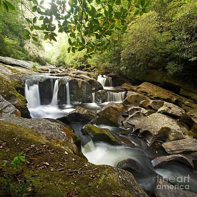 Smoky Mountain Waterfall Poster by Matt Tilghman