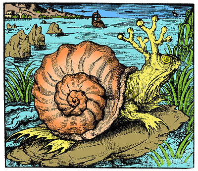 Snail From Sarmatian Sea, Legendary Poster by Science Source