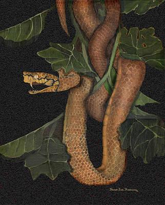 Snake Of No Kind Poster