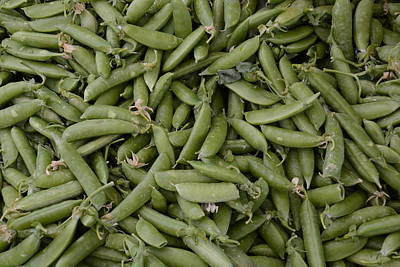 Snap Peas Poster
