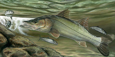 Snook Fast Food Poster