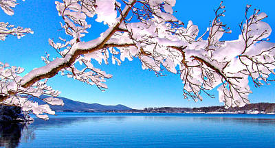 Snow Branch Smith Mountain Lake Poster